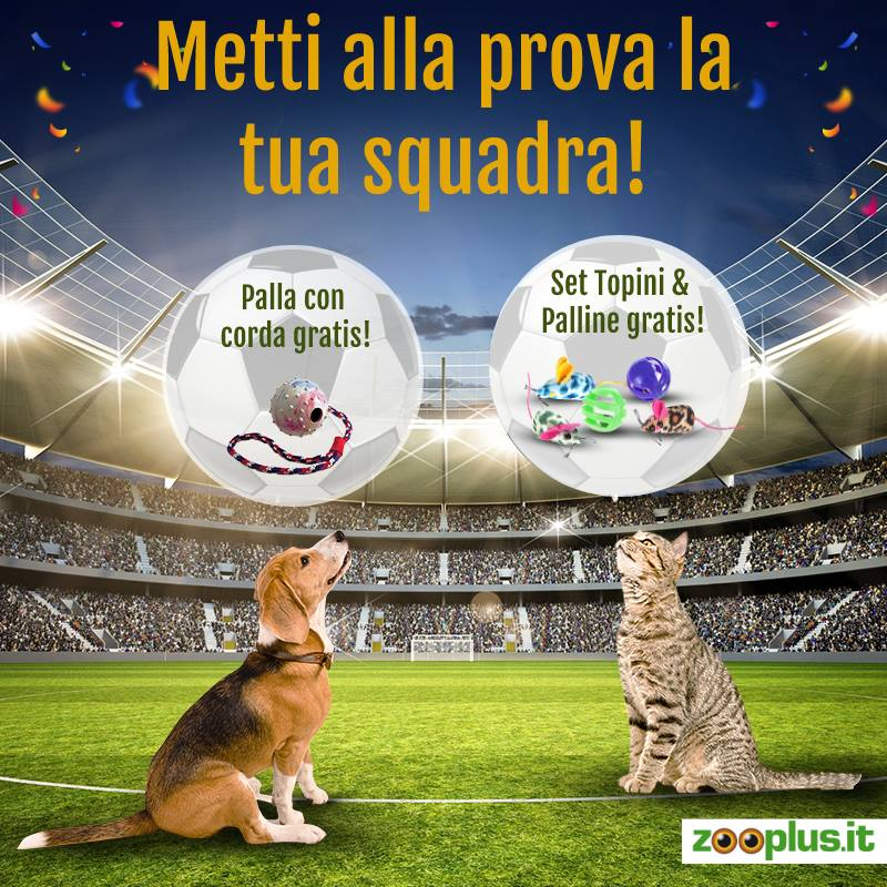 zooplus codice coupon